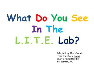 What  Do  You  See In  The L.I.T.E.  Lab?