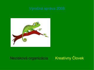 Výročná správa 2008
