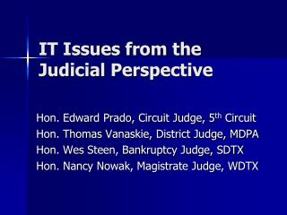IT Issues from the Judicial Perspective