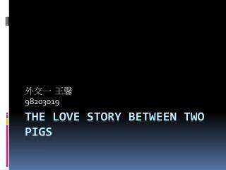 The Love Story Between Two Pigs