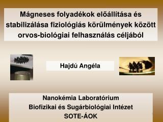 Hajdú Angéla