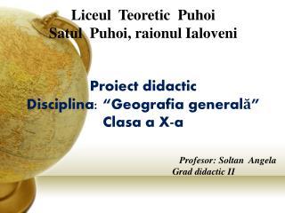 Liceul T eoretic  Puhoi Satul   Puhoi,  raionul Ialoveni Proiect didactic