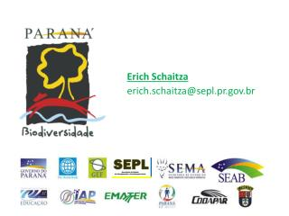 Erich  Schaitza erich.schaitza@sepl.pr.br