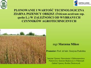 mgr  Marzena Mikos Promotor:  Prof. dr hab. Grażyna Podolska