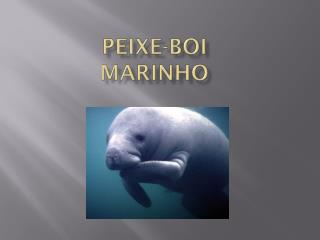Peixe-Boi marinho