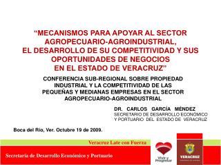 MECANISMOS PARA APOYAR AL SECTOR AGROPECUARIO-AGROINDUSTRIAL,  EL DESARROLLO DE SU COMPETITIVIDAD Y SUS OPORTUNIDADES D