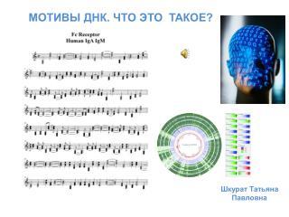 МОТИВЫ ДНК. ЧТО ЭТО  ТАКОЕ?