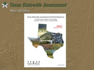 Texas Statewide Assessment