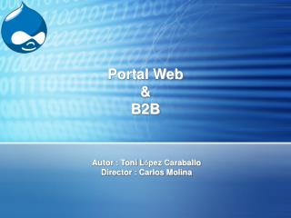 Portal Web & B2B