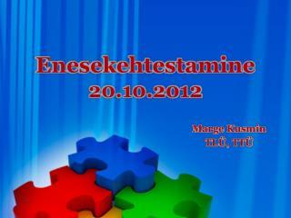 Enesekehtestamine 20.10.2012