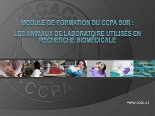 MODULE DE FORMATION DU CCPA sur : les animaux de laboratoire utilisés en recherche biomédicale