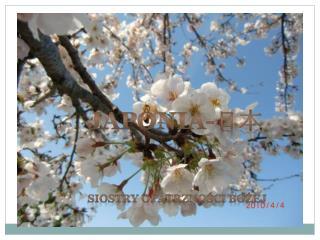JAPONIA- 日本 SIOSTRY OPATRZNO ś CI BO ż EJ