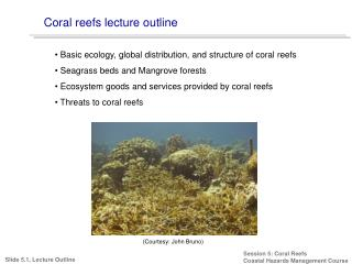 Coral reefs lecture outline