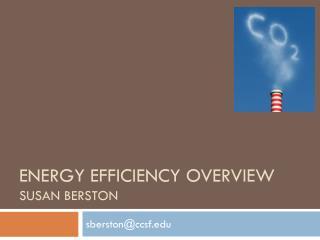 Energy Efficiency overview susan berston