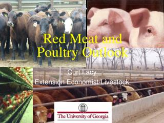 Red Meat and  Poultry Outlook