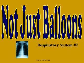 Respiratory System #2