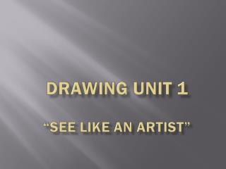 "DRAWING  UNIT 1 ""see like an artist"""