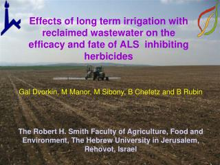 Effects of long term irrigation with reclaimed wastewater on the efficacy and fate of ALS  inhibiting herbicides