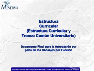 Estructura Curricular (Estructura Curricular y Tronco Común Universitario)