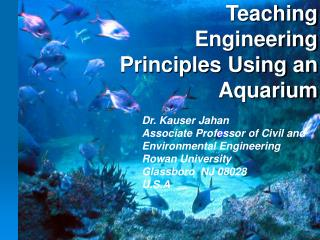 Teaching Engineering Principles Using an Aquarium