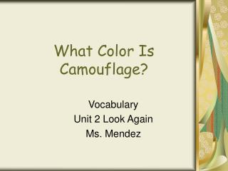 What Color Is Camouflage