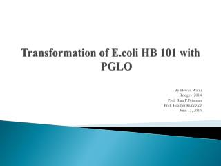 Transformation of  E.coli  HB 101 with PGLO
