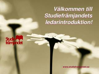 Välkommen till Studiefrämjandets ledarintroduktion!