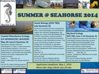 SUMMER @ SEAHORSE  2014