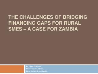The Challenges of Bridging Financing Gaps for Rural SMEs   A Case for Zambia
