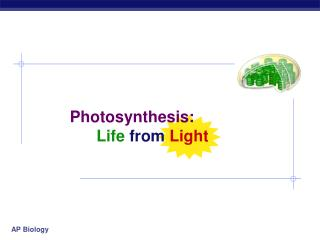Photosynthesis: Life from Light