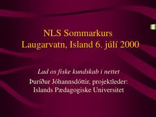 NLS Sommarkurs   Laugarvatn, Island 6. júlí 2000