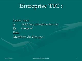 Entreprise TIC :