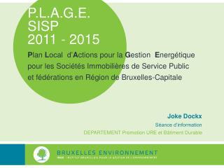 P.L.A.G.E.  SISP  2011 - 2015