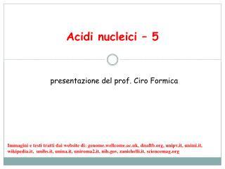Acidi nucleici – 5