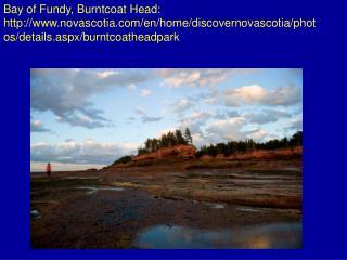 Bay of Fundy, Burntcoat Head: flickr/photos/rexton/127635673/