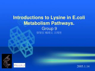 Introductions to Lysine in E.coli Metabolism Pathways. Group 9   張智宏 楊翊文 王翔昱
