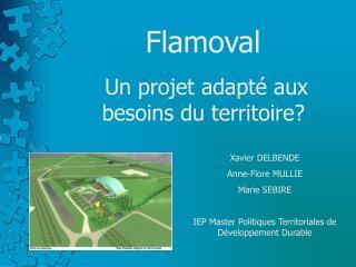 Flamoval  Un projet adapté aux  besoins du territoire?