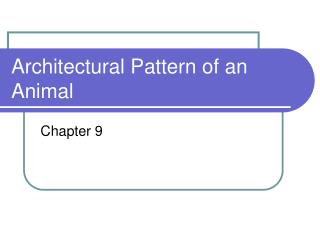 Architectural Pattern of an Animal