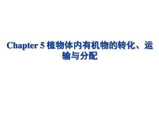 Chapter 5  植物体内有机物的转化、运输与分配