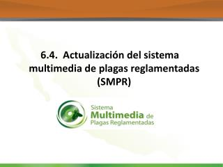 6.4.  Actualización del sistema multimedia de plagas reglamentadas (SMPR)