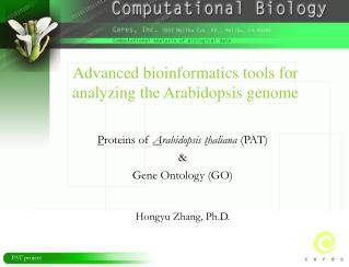 Advanced bioinformatics tools for analyzing the Arabidopsis genome