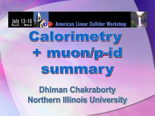 Calorimetry  + muon/p-id summary