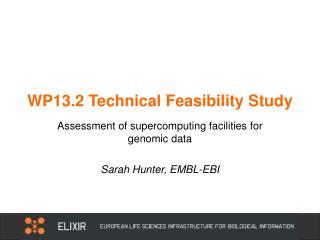WP13.2 Technical Feasibility Study
