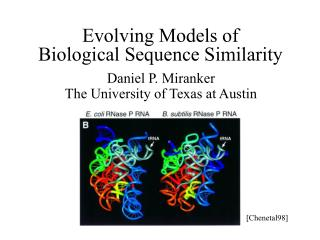 Evolving Models of  Biological Sequence Similarity