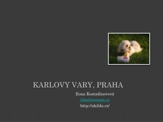 Karlovy Vary , Praha
