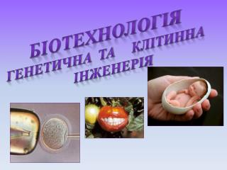 Біотехнологія Генетична   та      клітинна Інженерія