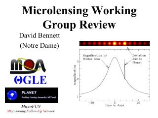 Microlensing Working Group Review