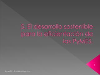 5. El desarrollo sostenible  para la  eficientación  de las  PyMES .