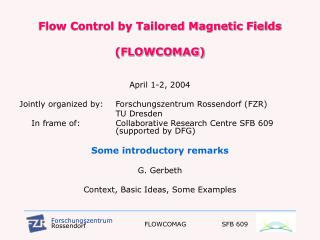 Flow Control by Tailored Magnetic Fields  (FLOWCOMAG)