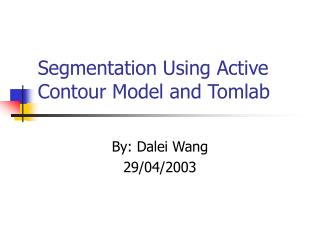 Segmentation Using Active Contour Model and Tomlab